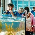The Goldfish (18).jpg
