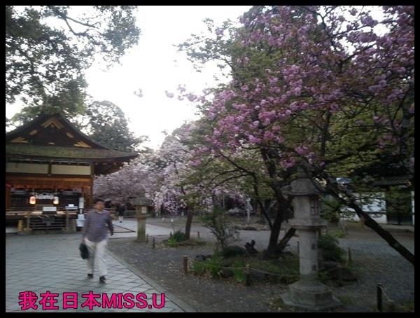 20140414_183151.jpg