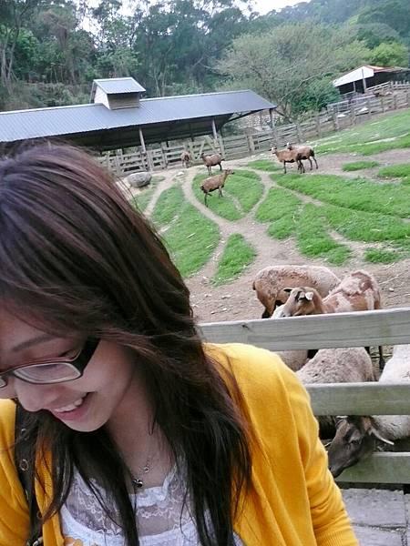 2008/04/10 飛牛牧場