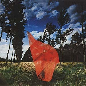 red-veil-in-wind1.jpg