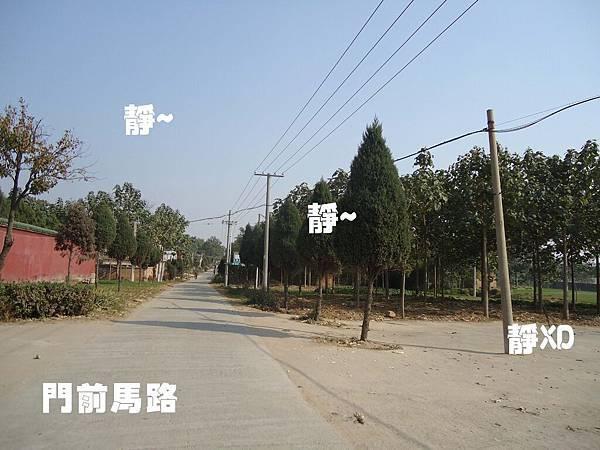 門前馬路.jpg