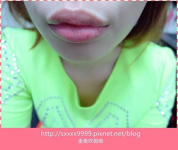 SAM_0364_副本.jpg