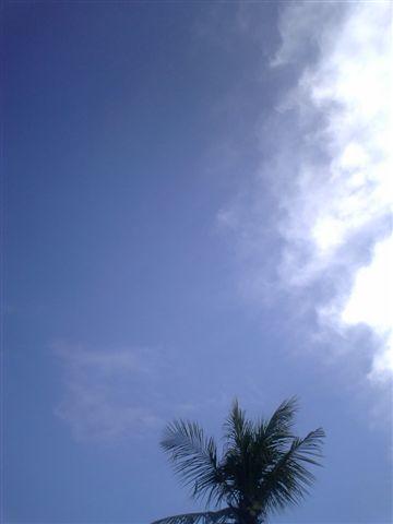好藍的天空