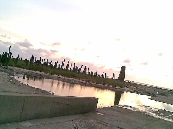 20100828(115).jpg