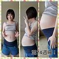 24週肚子