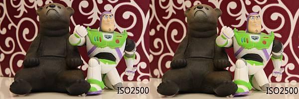 ISO2500.jpg