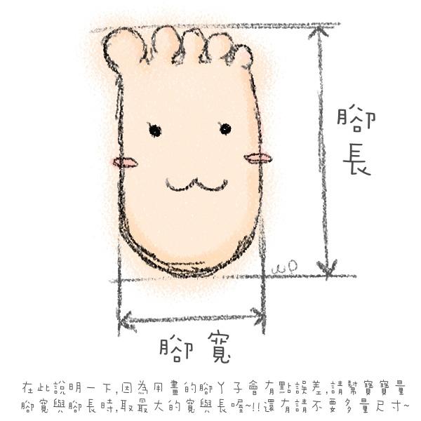腳長量法圖.jpg