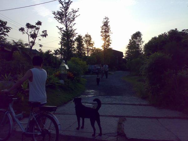 騎腳踏車出發往海邊囉