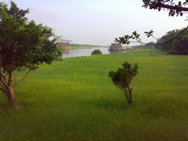 沿途景觀之綠草如茵