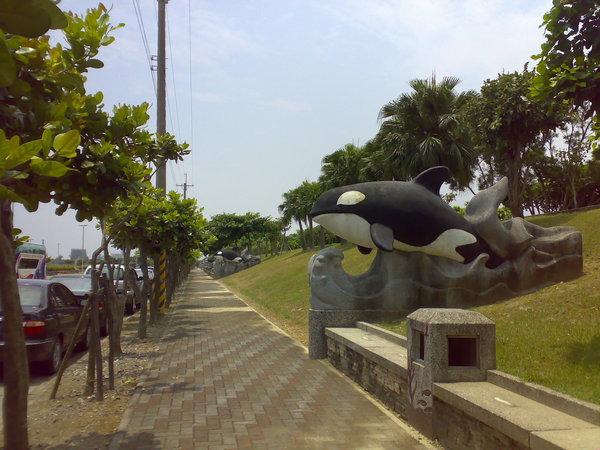 遊客中心外頭有好多虎鯨的雕塑