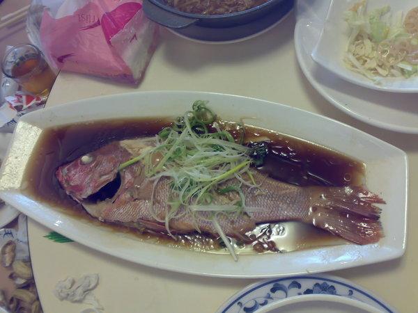 這魚,照片上看起來沒什麼,其實它很大盤好呗?
