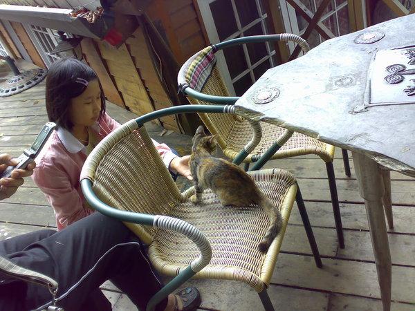 少女逗玩著活潑不怕生的小貓