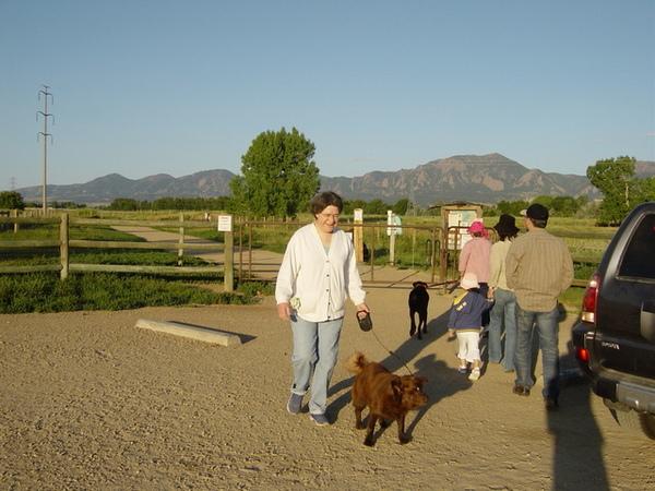 這就是我們去的遛狗場