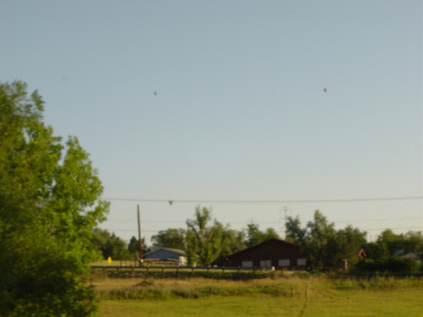 寬廣的天空裡有三個熱氣球