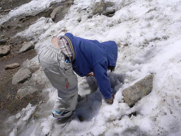 為了玩雪不顧形象的杜小昀
