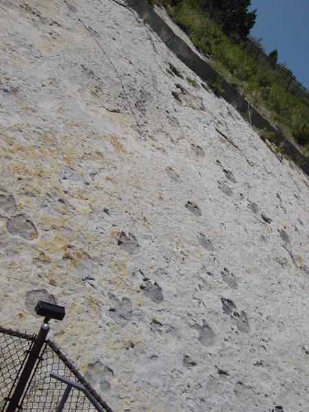 Red Rocks附近的恐龍腳印遺跡
