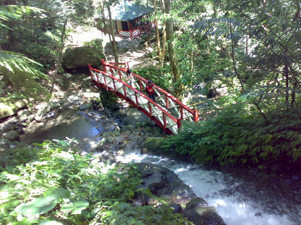 從虹橋瀑布上往下看