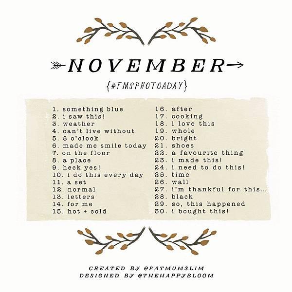 photoaday-november