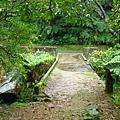 照片 045-灰窯瀑布上方的運煤橋