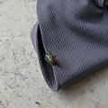 照片 035-七星盾背椿象若蟲