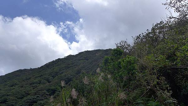 照片 049-從頂中股山基點仰望冷水大山.jpg