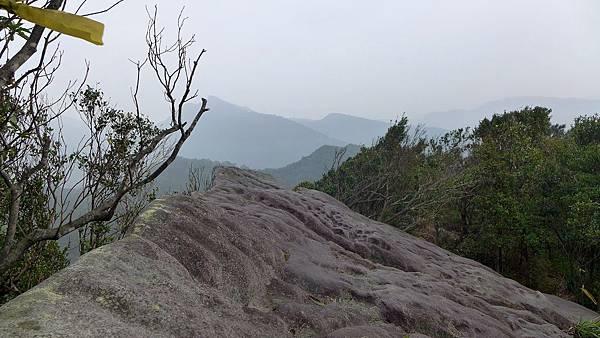 照片 016-眺遠右十四坑山