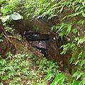 照片 039-封閉的媒礦坑