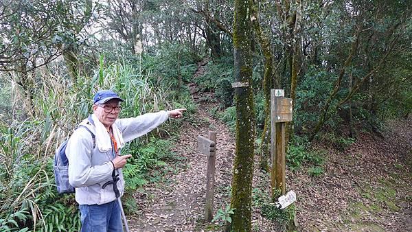 照片 052大尖山與和尚頭山另一岔路口前Mx Lin.jpg