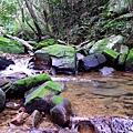 照片 014-遠望坑溪支流