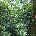 照片 023-木屋遺址周邊路標.jpg