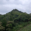 照片 018-從鬼子瀨尖山下來.jpg