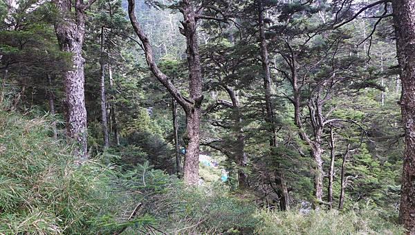 照片 034-溪谷中的帳篷.jpg