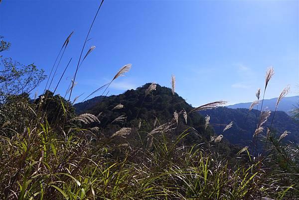 照片 058-養老山.jpg
