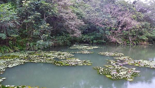 照片 026-五坑湖.jpg