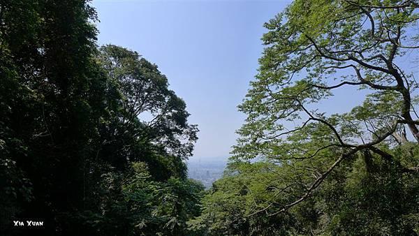 照片 017-天玉宮前廣場.jpg