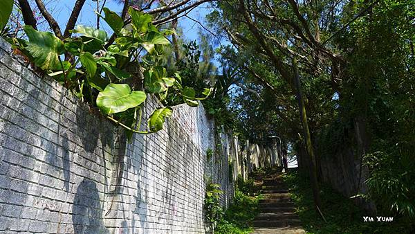 照片 018-往下竹林步道出口的圍牆.jpg