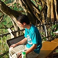 2009-09-04-柴山-031.JPG