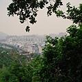 2009-09-04-柴山-046.JPG