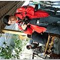 2010-01-26_梅嶺-00025.jpg