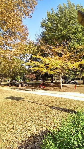 井之頭公園_007.jpg
