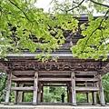 1-圓覺寺 (24)