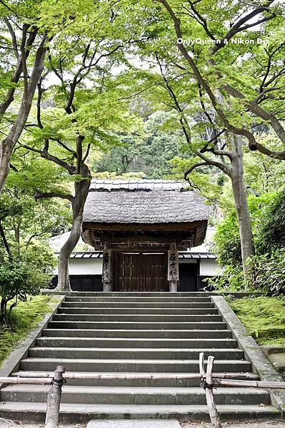 1-圓覺寺 (35)