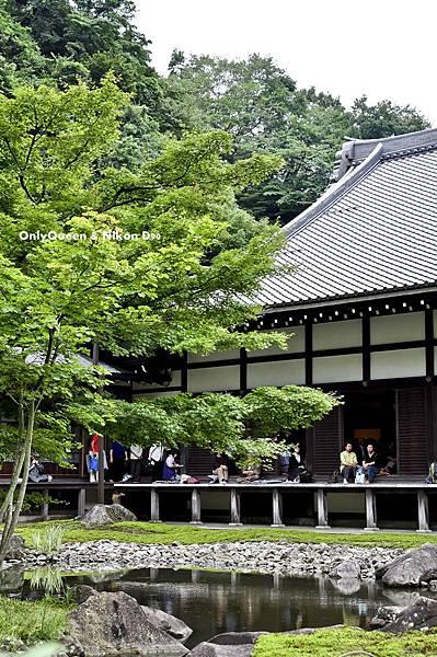 1-圓覺寺 (38)