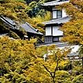 1-圓覺寺 (39)