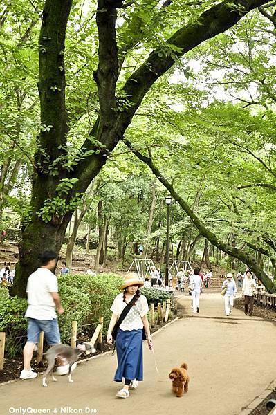 1-吉祥寺+井之頭公園 (30)