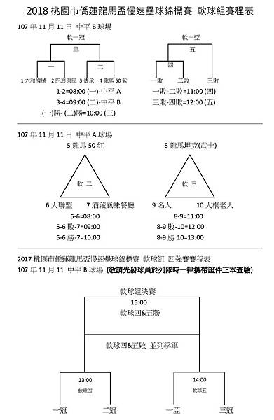壯年軟球組.jpg