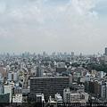 20110729通天閣難波甲子園 012.jpg
