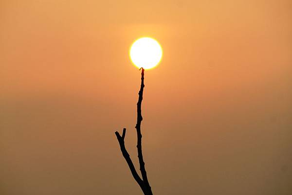 夕陽-6.JPG
