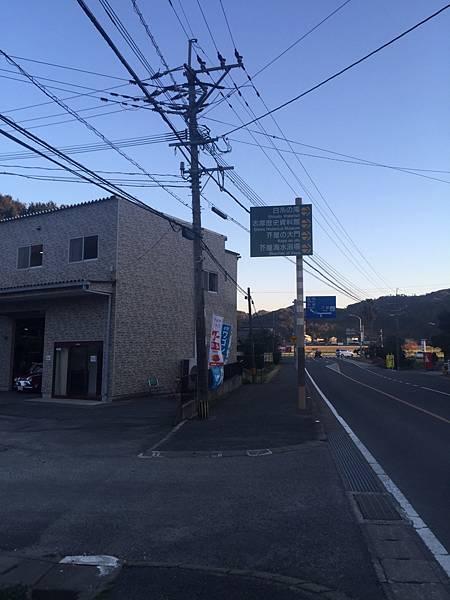 20170319_170319_0011.jpg