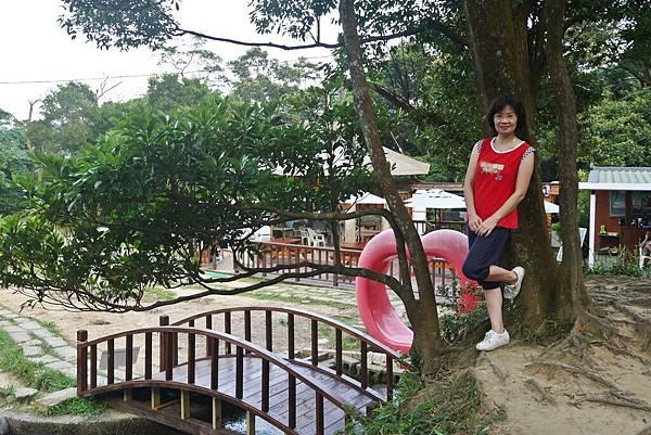 新山夢湖01